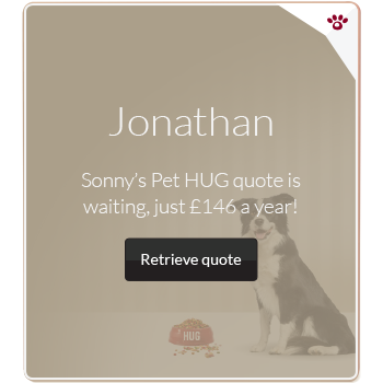 Personalised pet insurance advert example for Jonathan